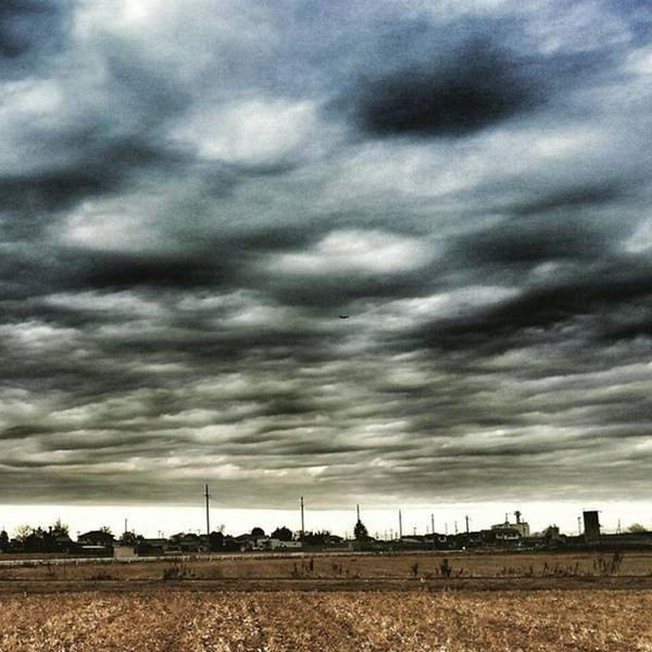 Strong Wall Art - Photograph - Strange Morning by Nori Strong