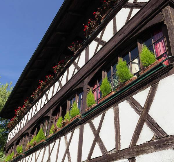 River Ill Wall Art - Photograph - Strasbourg Window Boxes by Teresa Mucha