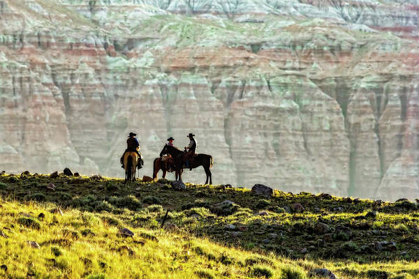 Photograph -  Wyoming Cowboys In A Strategy Meeting? by Kay Brewer