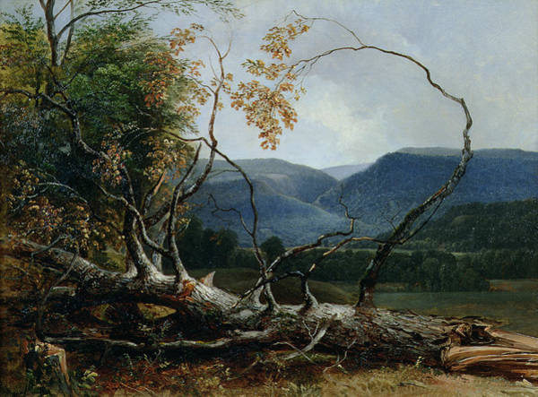 Terrain Painting - Stratton Notch - Vermont by Asher Brown Durand