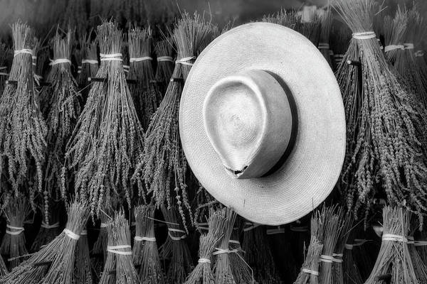 Photograph - Straw Hat And French Lavender Bunches Bw by Susan Candelario