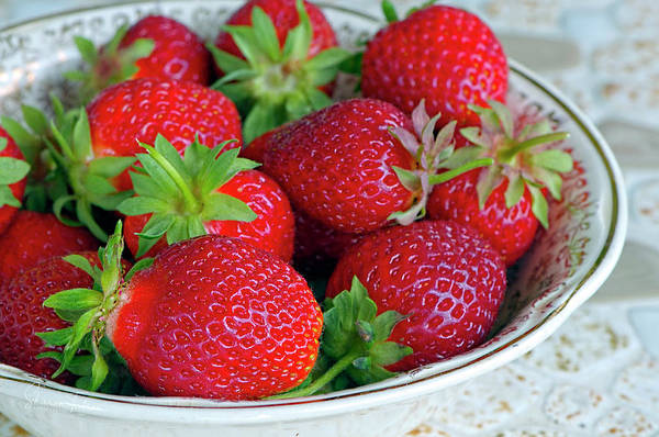 Photograph - Strawberries From The Garden by Sharon Talson
