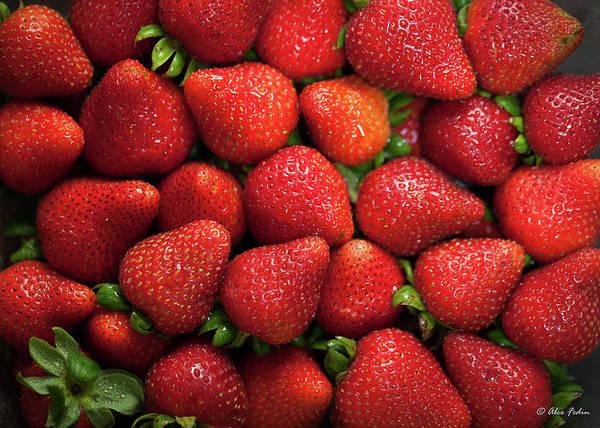 Photograph - Strawberries In A Bulk by Alexander Fedin
