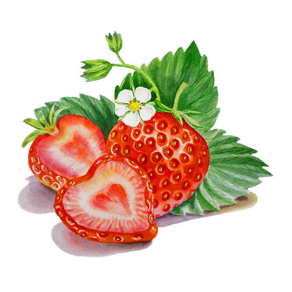 Wall Art - Painting - Strawberries  by Irina Sztukowski