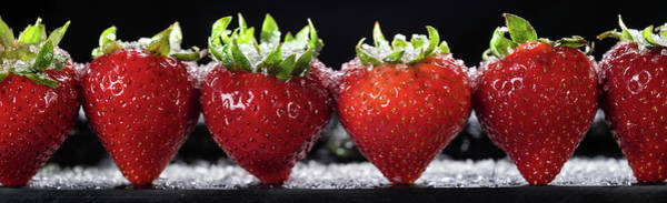 Wall Art - Photograph - Strawberries Panorama by Steve Gadomski