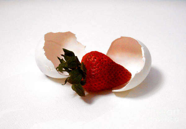 Photograph - Strawberry Egg Breakfast by Christopher Shellhammer