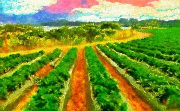 Digital Art - Strawberry Fields by Caito Junqueira