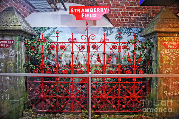 Photograph - Strawberry Fields Forever by Doc Braham