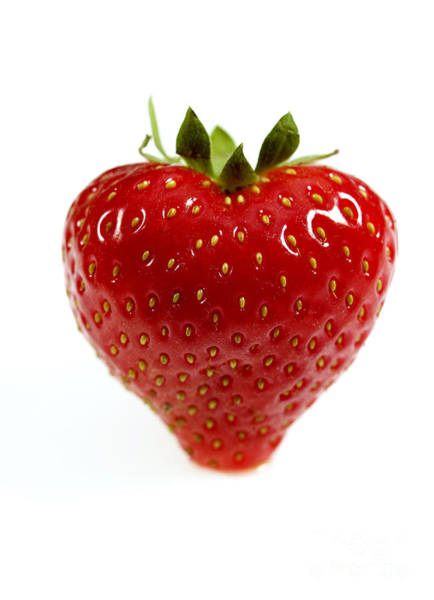 Photograph - Strawberry by Gerard Lacz