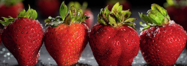 Wall Art - Photograph - Strawberry Panorama by Steve Gadomski