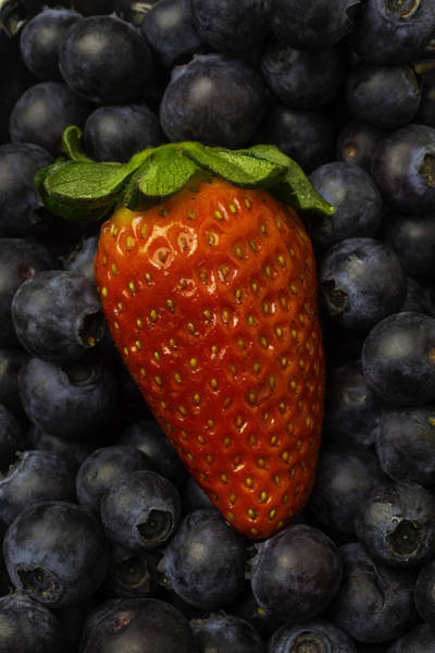 Blue Berry Photograph - Strawberry With Blueberries by Garry Gay