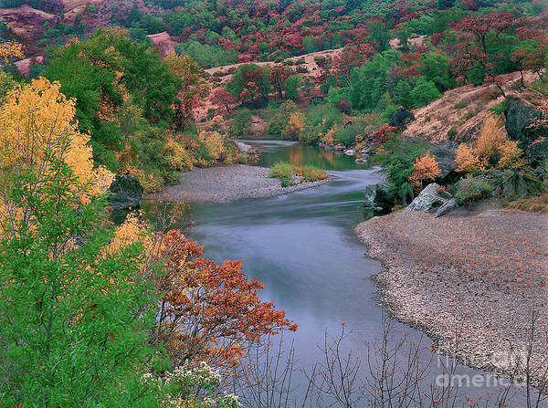 Photograph - Stream And Fall Color In Central California by Dave Welling