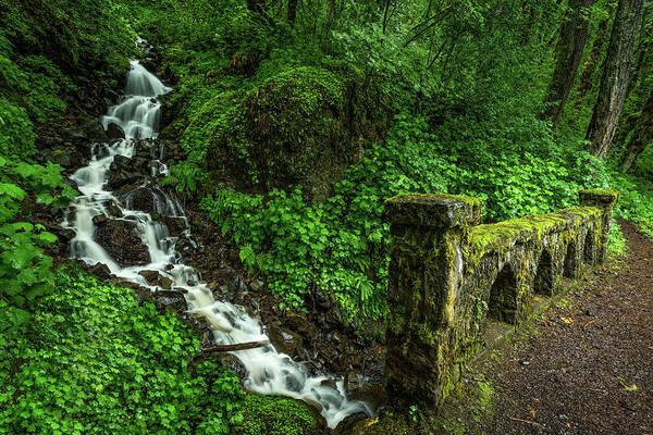 Photograph - Stream Down The Hillside by Rick Strobaugh