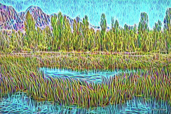 Digital Art - Stream Flow Moment by Joel Bruce Wallach