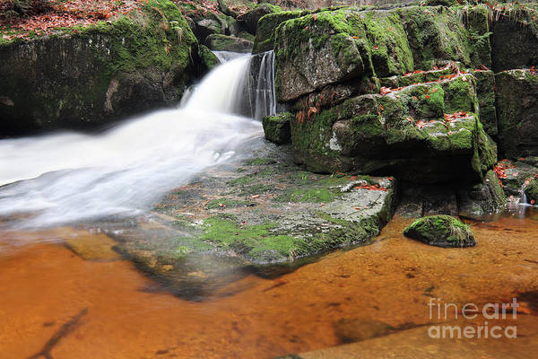Wall Art - Photograph - Stream In The Autumn Forest by Michal Boubin