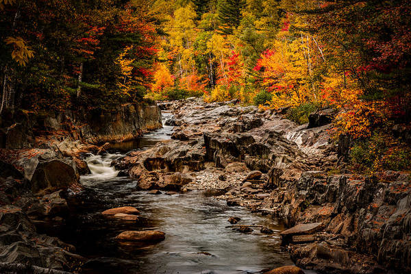 Photograph - Stream Meanders The Fall Foliage by Jeff Folger