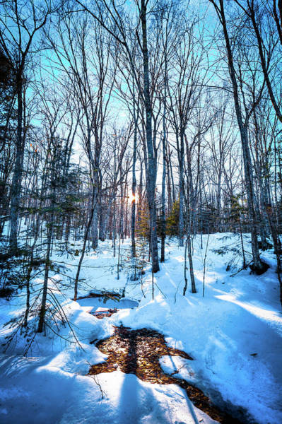 Photograph - Stream Through The Snow by David Patterson