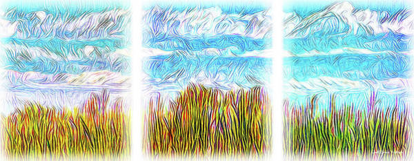 Digital Art - Streaming Fields Triptych by Joel Bruce Wallach