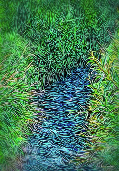 Digital Art - Streaming Summer Flow by Joel Bruce Wallach