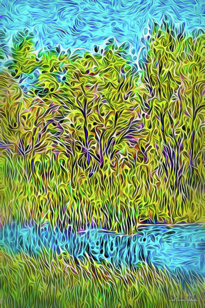 Digital Art - Streaming Summer Waters by Joel Bruce Wallach
