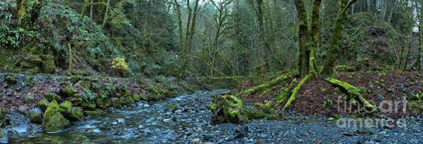 Photograph - Streaming Through Goldstream by Adam Jewell