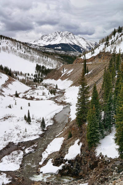Photograph - Streaming Through The Snow by Leda Robertson