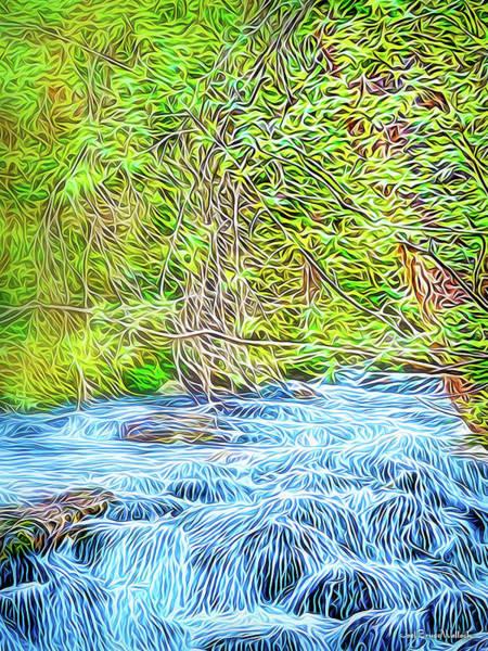 Rockies Digital Art - Streaming Through The Woods by Joel Bruce Wallach