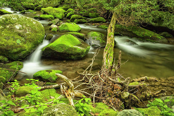 Photograph - Streams Of The Smoky Mountains by Kay Brewer