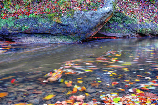 Photograph - Streamswirl by Sam Davis Johnson