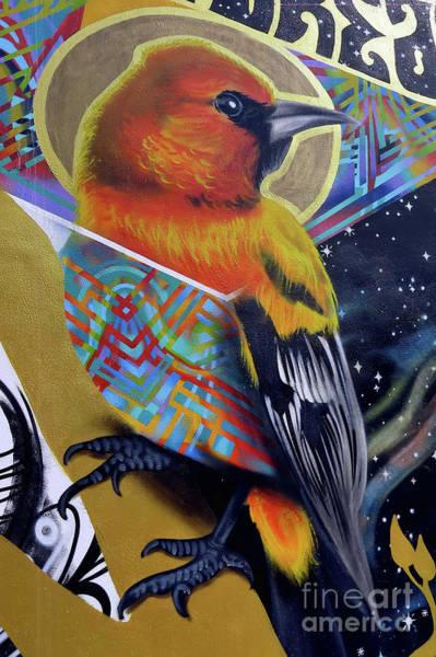 Photograph - Street Art by Teresa Zieba