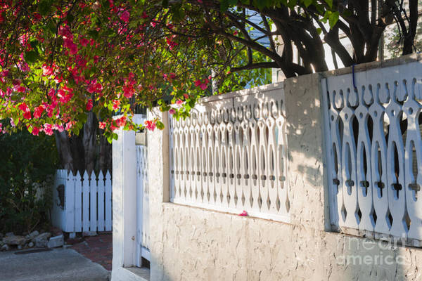 Wall Art - Photograph - Street In Key West by Elena Elisseeva