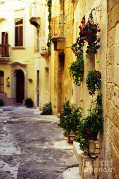 Photograph - Street Scene Birgu Malta by Thomas R Fletcher