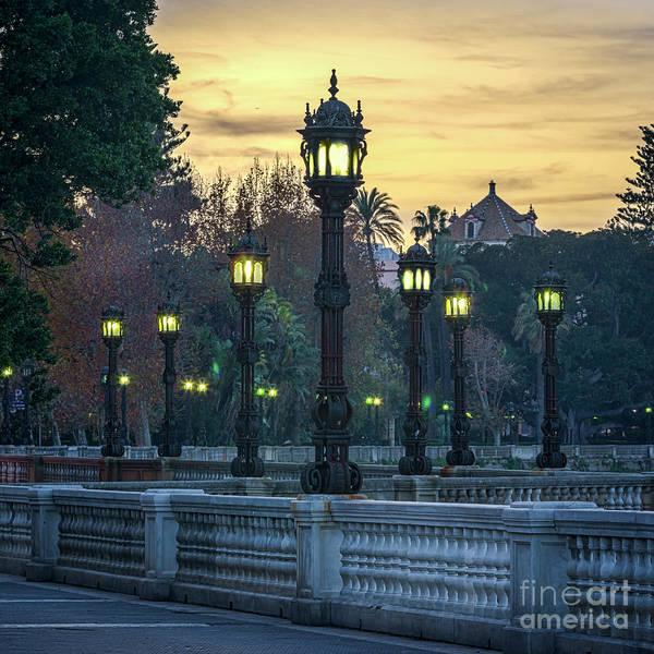 Photograph - Streetlights Alameda Apodaca Cadiz Spain by Pablo Avanzini