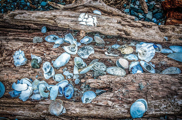Photograph - Strewn About I by Roxy Hurtubise
