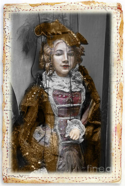Photograph - String Lady by Craig J Satterlee