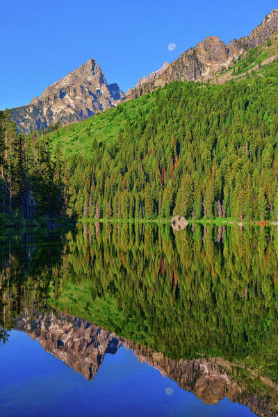 Photograph - String Lake Morning Mirror by Greg Norrell