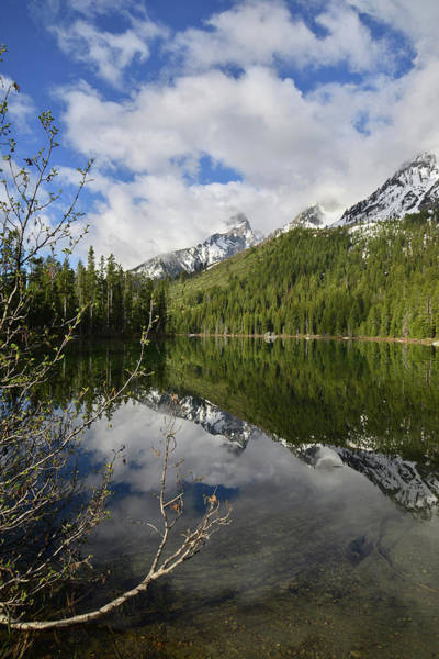Photograph - String Lake Reflection by Ray Mathis
