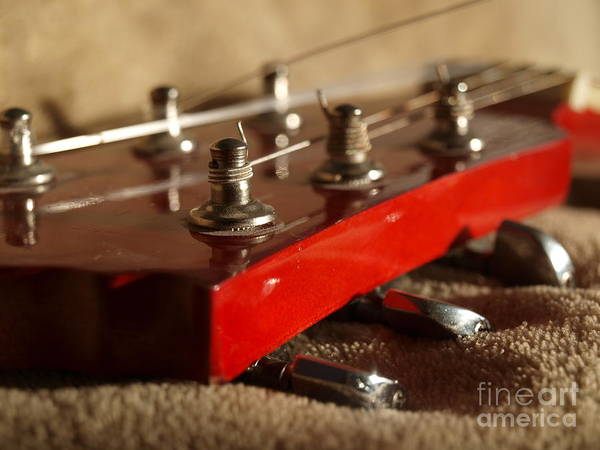 Photograph - Strings And Pegs by Vivian Martin