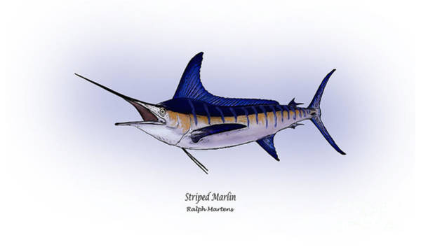 Angling Art Painting - Striped Marlin by Ralph Martens