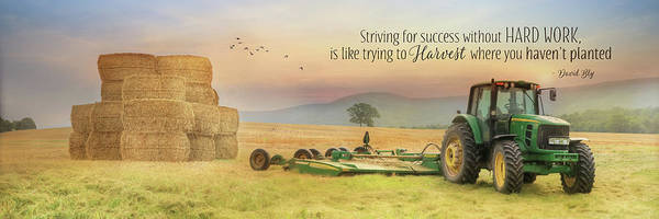 Wall Art - Photograph - Striving For Success by Lori Deiter