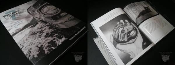 Photograph - Strokes Of Genius 7 by Joe Burgess