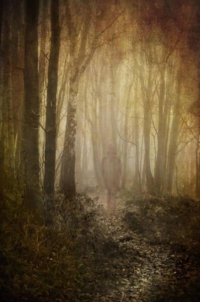 Photograph - Stroll Through My Mind by Meirion Matthias