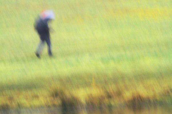 Walking In The Rain Wall Art - Photograph - Strolling In The Rain by Karol Livote