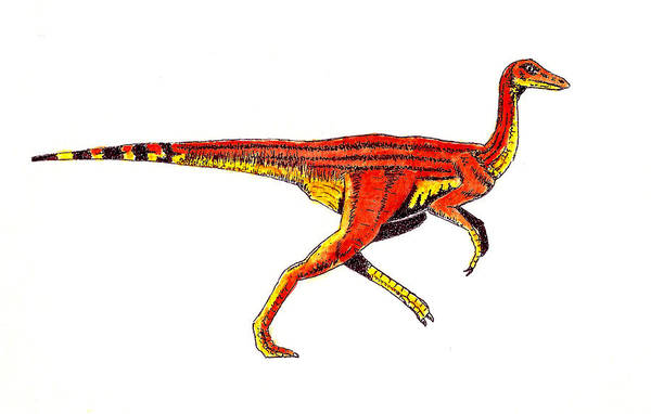 Wall Art - Painting - Struthiomimus by Michael Vigliotti