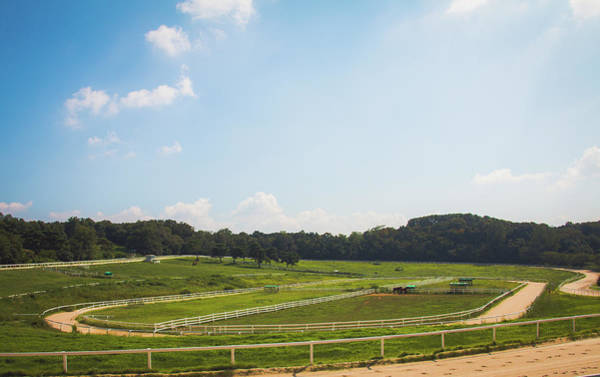 Horse Farm Photograph - Stud Farm by Hyuntae Kim