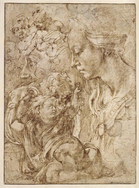 Buonarroti Wall Art - Drawing - Studies For A Holy Family by Michelangelo di Lodovico Buonarroti Simoni