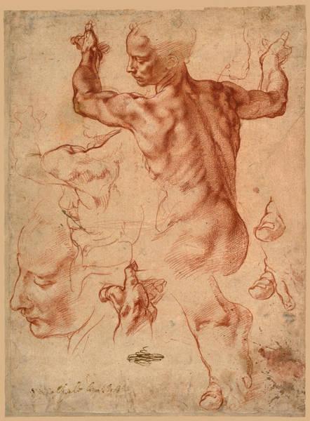 Drawing - Studies For The Libyan Sibyl by Michelangelo di Lodovico Buonarroti Simoni