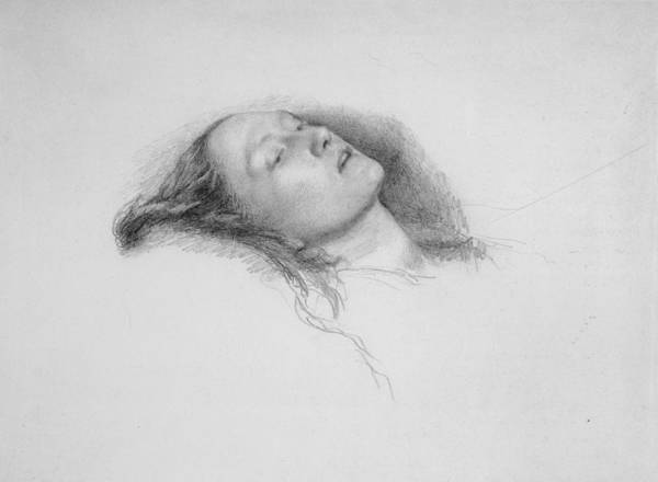 Ophelia Painting - Study For Ophelia by MotionAge Designs