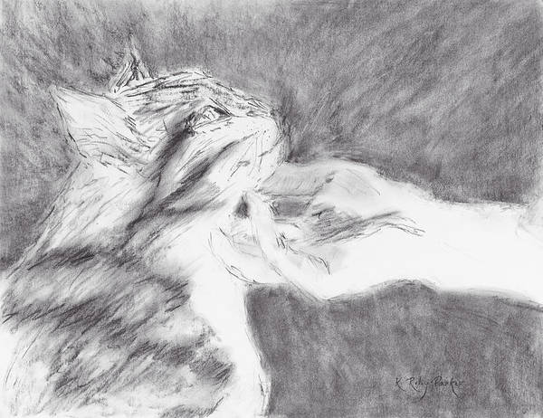 Drawing - Study For Sweet Spot by Kathryn Riley Parker
