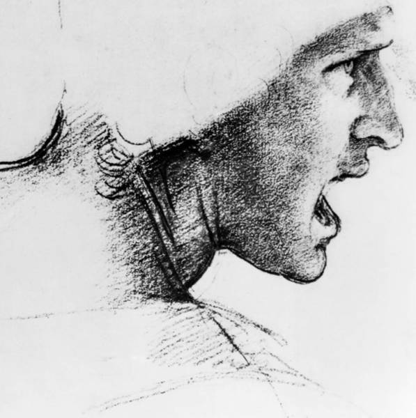 Young Man Drawing - Study For The Head Of A Soldier In The Battle Of Anghiari by Leonardo Da Vinci
